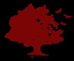 Logo Pensionato